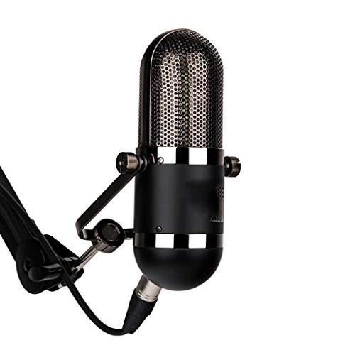 Diaod Micrófono de Estudio de grabación Profesional de micrófono con Cable para estación de radiodifusión Karaoke de Escenario