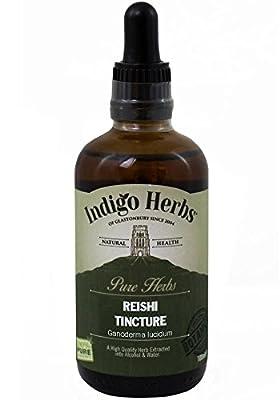 Reishi Mushroom Herbal Tincture - 100ml (Quality Assured) by Indigo Herbs