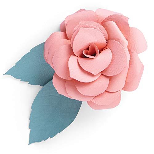 Sizzix Die 2PK Courtyard Bloom Set di Fustelle Thinlits 2 pz 664586 Fiore da Giardino by Jennifer Ogborn, Fioritura del Cortile, Taglia unica