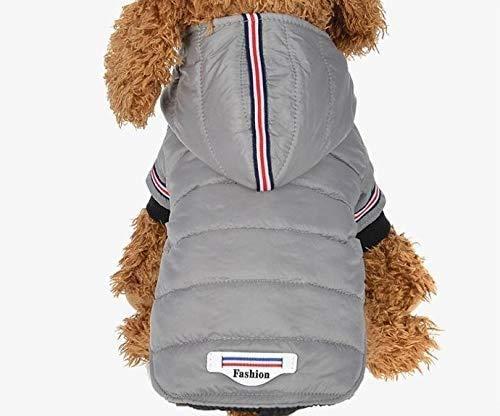 Hond kleren, Winter Pet hondenkleding warme donsjas Waterproof Coat hoodies for Chihuahua Klein Medium honden Puppy, Maat: M, huisdier kleren voor aijia (Color : Grey)