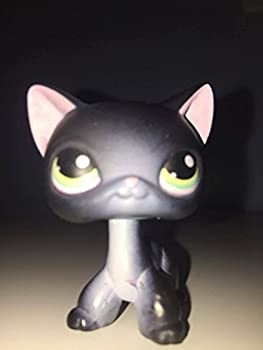 Siamese Shorthair #336  Black  - Littlest Pet Shop  Retired  Collector Toy - LPS Collectible Replacement Figure - Loose  OOP Out of Package & Print