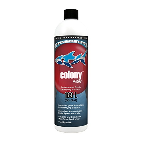 ATM Blue Shark Animal Planet Tanked AAT00414 Colony Sw, 473 ml