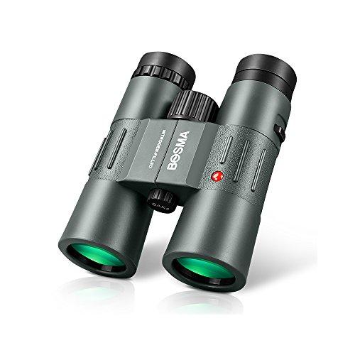 Prismáticos Everyday Home Binoculares para Adultos y niños HD 10X42 Profesional con Adaptador para teléfono móvil-Apto para Adultos Observación de Aves Caza, observación de Aves, Viajes y conciertos