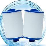 Cartucce di ricambio per filtro whirlpool, per Unicel 6CH-940 per Pleatco PIWW50-P3 Filtri idromassaggio, filtro spa per Darlly 60401, SC714, Magnum WY45, Aida Whirlpool, per filtro jacuzzi (2 pz)