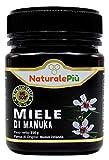 Miel de Manuka 500+ MGO 250 gr. Produit en Nouvelle-Zélande. Actif et brut, 100 % pur et naturel. Méthylglyoxal testé par des laboratoires accrédités.
