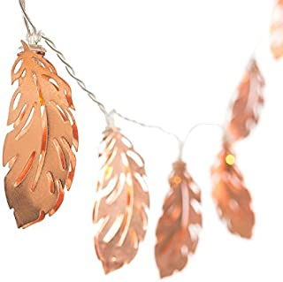 Ling's moment Rose Gold Feather Copper Metal 5Ft 10 LED Lantern String Lights for Party Decorations Rose Gold Bedroom Decor Fairy Lights Bohemian Decorations Wall Decor Bridal Shower Patio Lighting