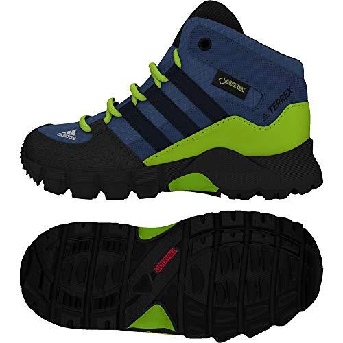 Adidas Terrex Mid GTX I, Botas Unisex niños, Azul (Azretr/Maruni/Limsol 000), 19 EU