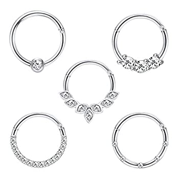Drperfect Daith Earrings 16G Stainless Steel Cartilage Helix Tragus Nose Hoop Piercing Jewelry 8MM 10mm Silver Gold Rose Gold Black Plated CZ Hinged Septum Clicker Rings