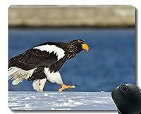YENDOSTEENマウスパッド、鳥、野生動物、ラプター滑り止めゴムベースマウスパッド