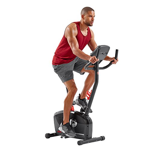 Best Exercise Bike Under 200 - Schwinn Upright Bike