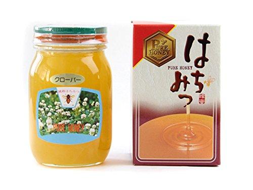 クローバー蜂蜜 600g 化粧箱入り (クローバーはちみつ、シロツメグサハチミツ) 北海道産クローバーハチミツ