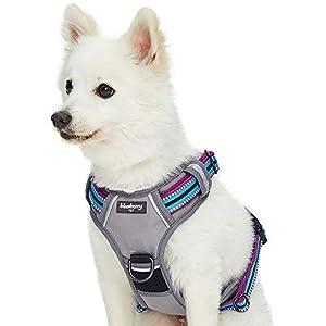 Blueberry Pet Soft & Comfy 3M Reflective Multi-Colored Stripe Mesh Padded No Pull Dog Harness Vest with Front/Back Leash Clips, Medium, Violet & Celeste
