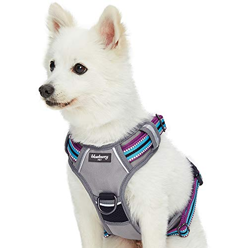 Blueberry Pet 2019 New 3 Colors Soft & Comfy 3M Reflective Multi-Colored Stripe Mesh Padded No Pull Dog Harness Vest with Front/Back Leash Clips, Medium, Violet & Celeste