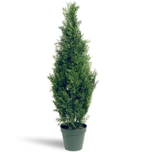 National Tree 36 Inch Arborvitae Tree in Dark Green Round Plastic Pot (LMC4-700-36-1)