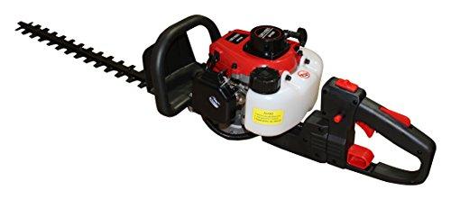 Bricoferr BFP0280 Cortasetos a Gasolina, Rojo y Negro