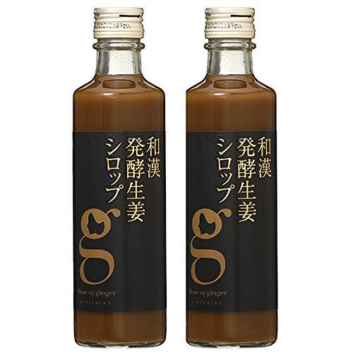 北海道アンソロポロジー 和漢発酵生姜シロップ 280mL 【2本セット】