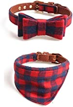 Best very small dog collars Reviews