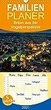 Brilon aus der Vogelperspektive - Familienplaner hoch (Wandkalender 2021, 21 cm x 45 cm, hoch)
