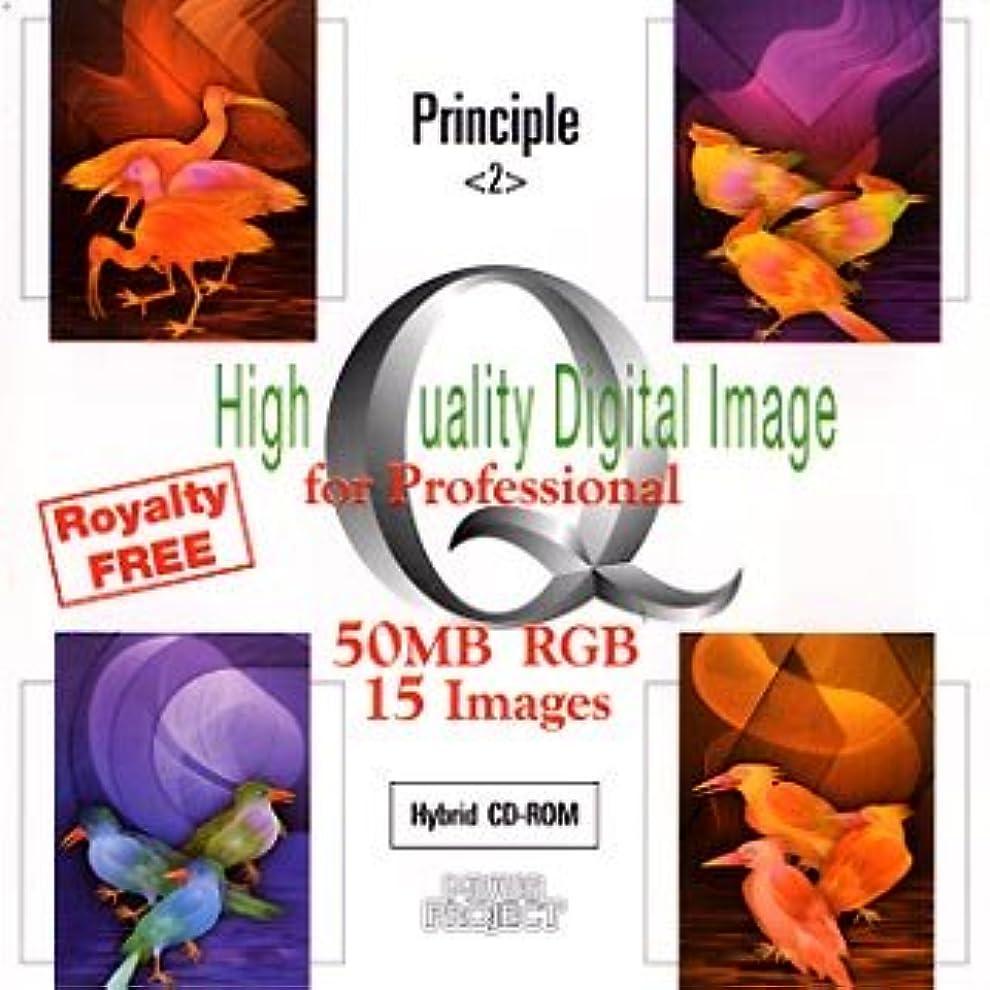 困惑した残り無人High Quality Digital Image Principle 2