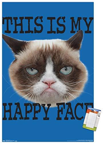 Trends International Grumpy Cat - Face Wall Poster, 22.375' x 34', Poster & Mount Bundle