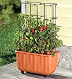 Plow & Hearth Rolling Self-Watering Polypropylene Tomato Planter with...