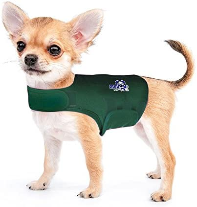 Mellow Shirt Dog Anxiety Calming Wrap XX Small Cypress product image