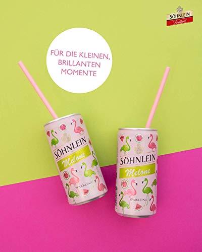 SOeHNLEIN-Sparkling-Melone-Dose-Sekt-12-x-02l-1059500-88