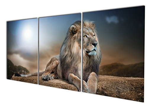 Gardenia Art - Animal World Series 24 Wild Lions Canvas Wall Art Paintings Animals Watercolor Pictures Artworks for Bedroom Living Room Decoration,24x16 inch/Piece, Framed, 3 Panels