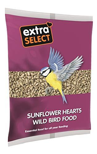 Extra Select Sunflower Hearts Wild Bird Food, 1 kg