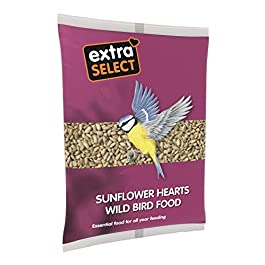 Extra Select Sunflower Heart Wild Bird