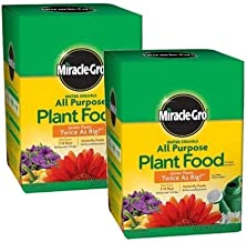 Miracle-Gro Pound 160101 Water-Soluble All Purpose Plant Food, 24-8-16, 1-Po (2)