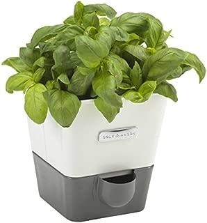 Best cole & mason self-watering indoor herb garden planter Reviews