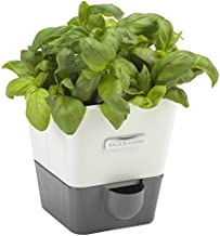 COLE & MASON Self-Watering Indoor Herb Garden Planter - Pot