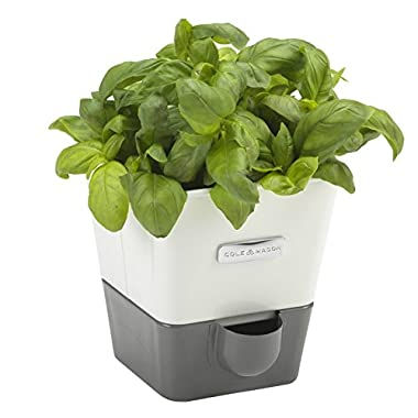 COLE & MASON Self-Watering Indoor Herb Garden Planter - Pot