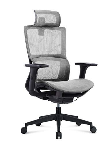 MIIGA ergonomischer Profi Bürostuhl Schreibtischstuhl für das Homeoffice, Chefsessel, ergonomisch, verstellbare Kopfstütze, Sitzhöhe und Rückenlehne, Belastbarkeit bis 150 kg MG233A (Silber)