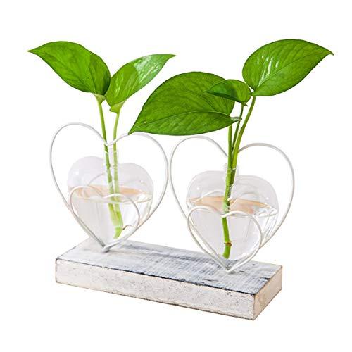 DEDC Desktop Glas Pflanzer Hydroponik Vase, Pflanzer Glasvase mit holzhalter für Home Decoration, Moderne kreative Herzform Pflanze Terrarium Stand, Scindapsus Container (2 Vase)