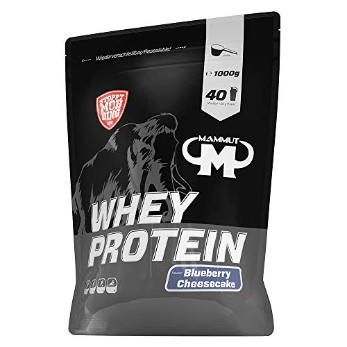 Mammut Nutrition Whey Protein Blueberry Cheesecake, 1000 g