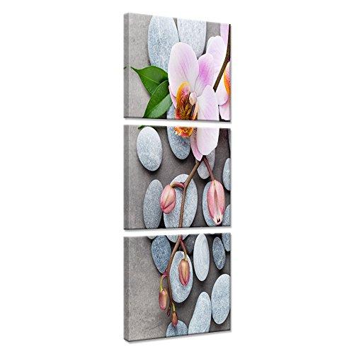 ORCHID/ÉE Image imprim/ée ROSE Tableau D/éco 100x40 cm D/écoration murale Impression sur toile Feeby ZEN