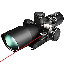 long range scope on a budget