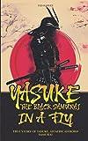 Yasuke, The Black Samurai, in a fly: True Story of Yasuke, an African Born Samurai (Life & Legacy In a Fly)
