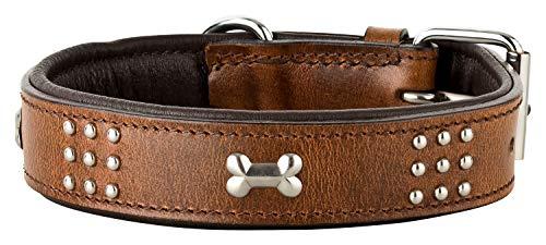 Schnüffelfreunde Lederhalsband Hund mit Applikation und Nieten I Hundehalsband Nala aus Leder (L - 36-45cm, Braun)