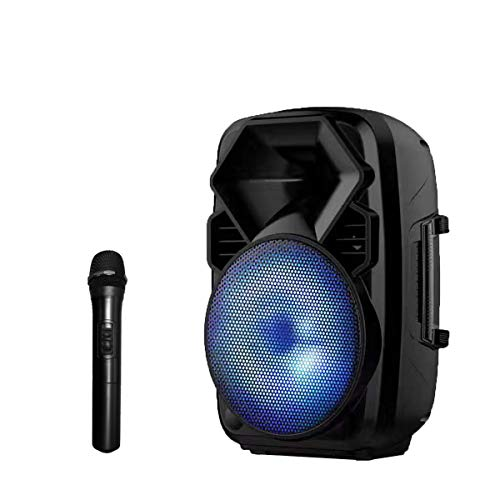 Cheapest Price! EARISE V28 Bluetooth Speaker PA System with Wireless Microphone