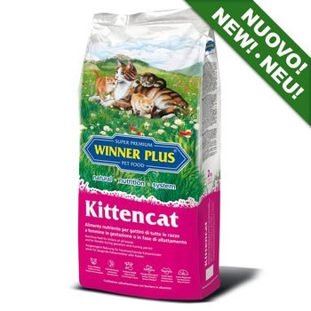 Winner Plus Kitten cat crocchette gatto 2kg