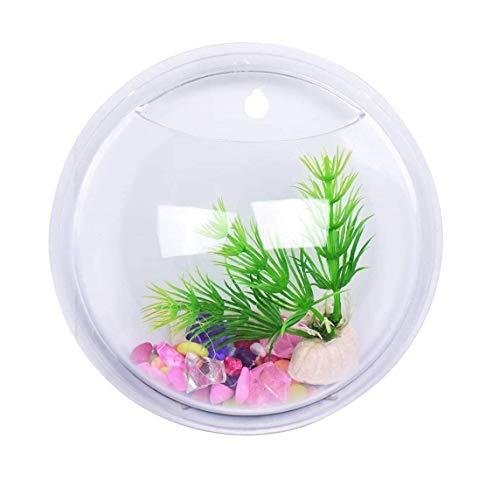 Inception Pro Infinite Acquario da Muro - Vaso - Pesci in Vetro - Piante idroponiche - Design da Parete - Visto in Televisione - da 15 cm - Idea Regalo Originale