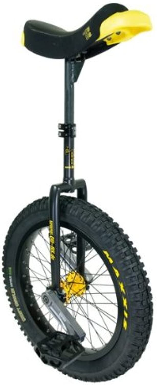 PassePasse Einrad, 47,5 cm (19 Zoll) schwarzB00DR18IFIRuf zuerst  | Verrückter Preis