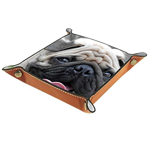 Caja de almacenamiento multiusos con bandeja valet de cuero 16x16CM Organizador de bandejas Se utiliza para almacenar pequeños accesorios.perro tirador