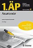 1. ÄP Anatomie: Original-Prüfungsfragen mit Kommentar (Schwarze Reihe)
