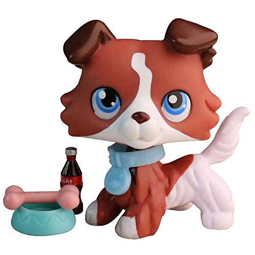 Judylovelps Coffee Collie, Custom Collie Coffee and White Body with Blue Eyes with Accessorries Collectable Figures