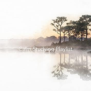 Calm Studying Playlist