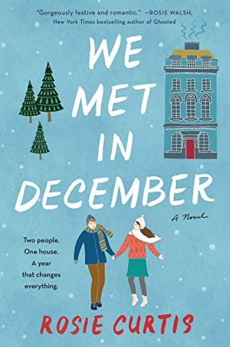 We Met in December: A Novel